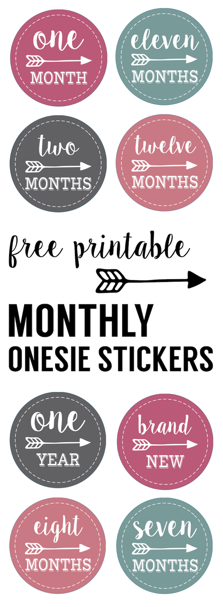 Baby girl monthly onesie stickers free printable. Print free baby onesie stickers and take month by month photos of your newborn. Great baby shower gift.