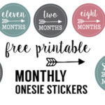 Baby girl monthly onesie stickers free printable. Print these free baby onesie stickers to take month by month photos of your newborn. Makes a great baby shower gift.