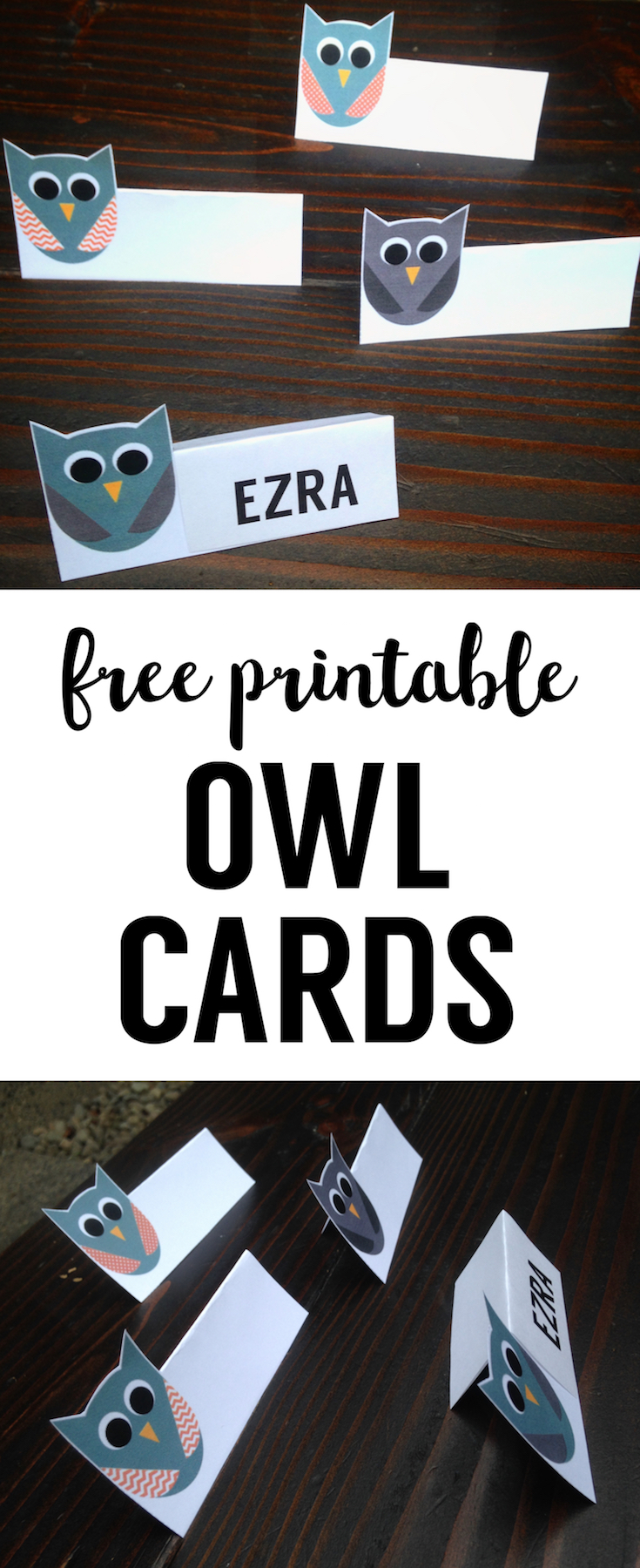 Free Printable Owl Tags. These owl printable tags are great DIY decor for owl place cards or owl food labels at an owl themed birthday party or owl themed baby shower.