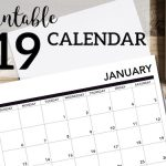 2019 Printable Calendar Free Pages. January, February, March, April, May June, July, August, September, October, November, December. #papertraildesign #calendar #2019calendar #organization