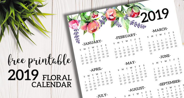 Free Printable 2019 Calendar Yearly One Page Floral Paper Trail Design