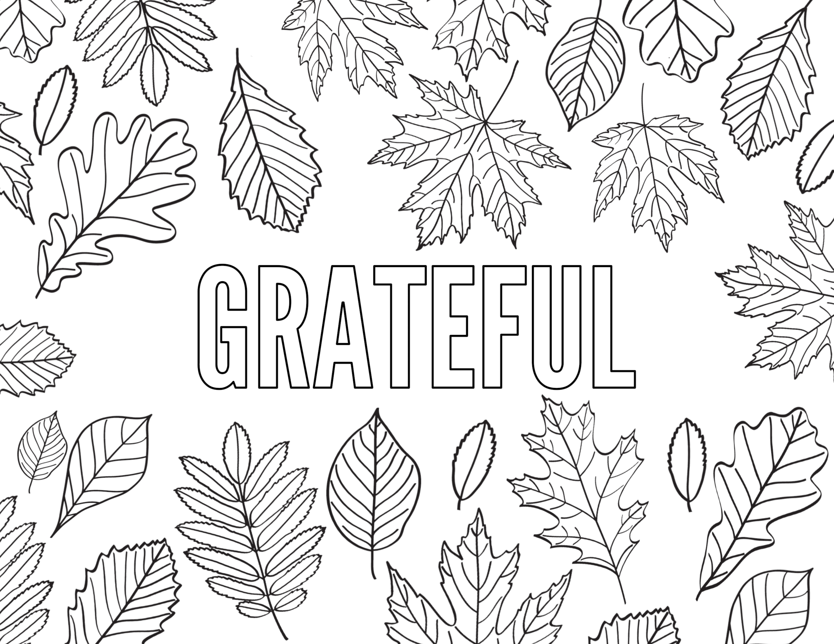 Thanksgiving Coloring Pages {Free Printable} | Paper Trail ...