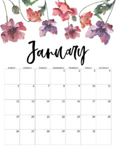 January 2020 Free Printable Calendar - Floral. Watercolor flower design calendar pages for a office or home calendar for work or family organization. #papertraildesign #calendar2020 #calendar #2020calendar #flowercalendar #floralprintables