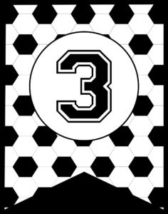 Soccer Banner Number 3