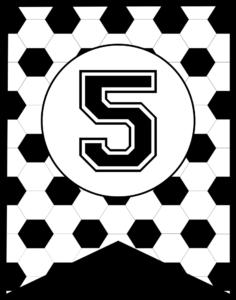 Soccer Banner Number 5