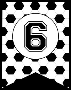 Soccer Banner Number 6