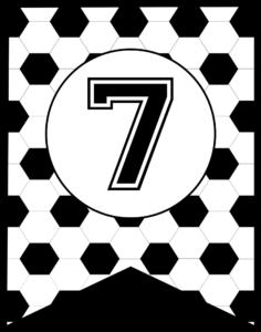 Soccer Banner Number 7