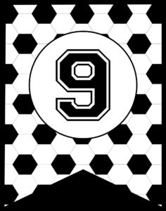 Soccer Banner Number 9