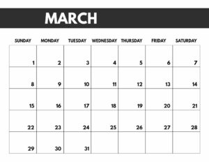 March 2020 Free Monthly Calendar Template in 8.5x11, big happy planner size.