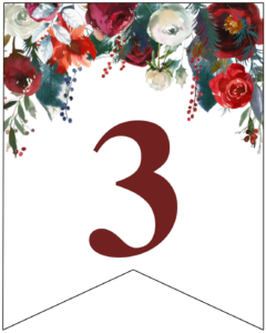 Number 3 Christmas pennant banner with red and green Christmas flowers