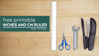 Printable metric ruler with inches as well with text overlay- free printable inches and cm ruler