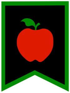 Apple chalkboard back to school banner flag with green border
