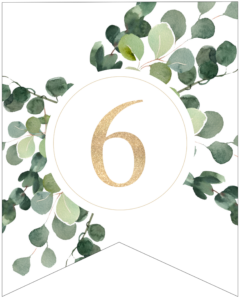 Number 6 decorative banner letter with gold letter and green leaves