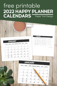 2022 happy planner yearly calendar pages with text overlay- free printable 2022 calendar